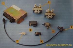 Основные компоненты отечественной системы впрыска